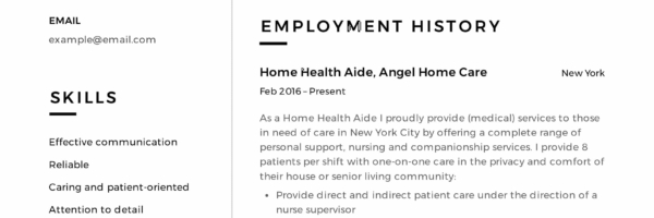 Home Health Aide Resume Sample Writing Guide 12 Samples Pdf