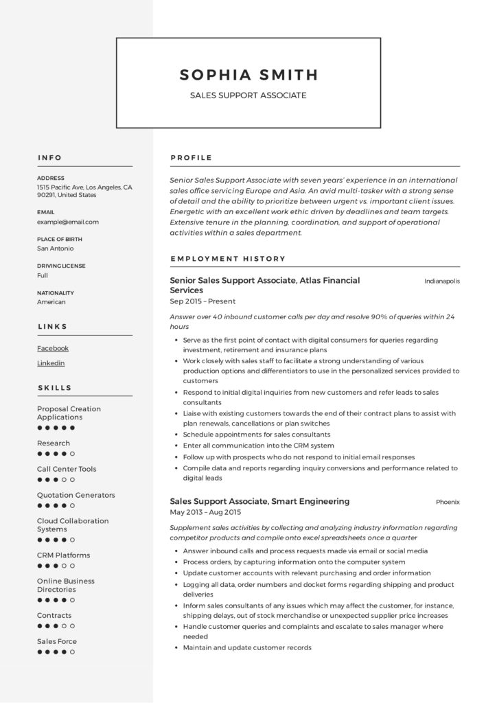 Sales Support Associate Resume Sample