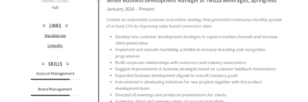 Business Development Manager Resume Guide 12 Templates Pdf