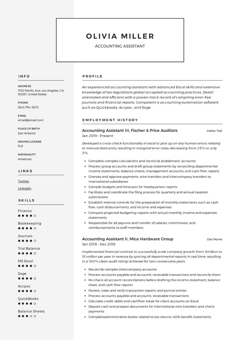 Account Assistant Template Resume