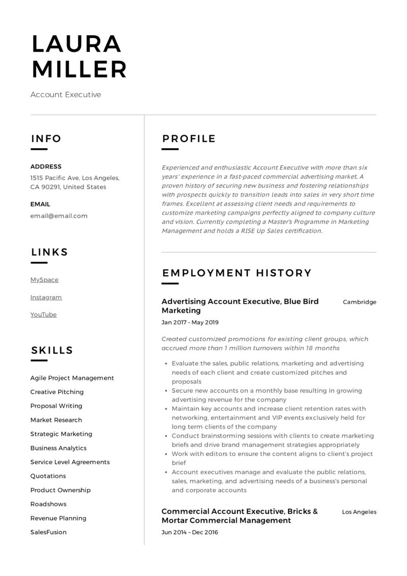 Modern Resume Account Executive
