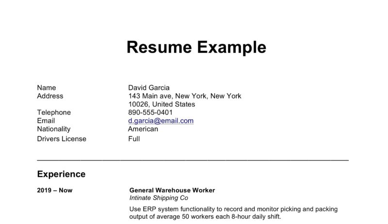 basic word resume template