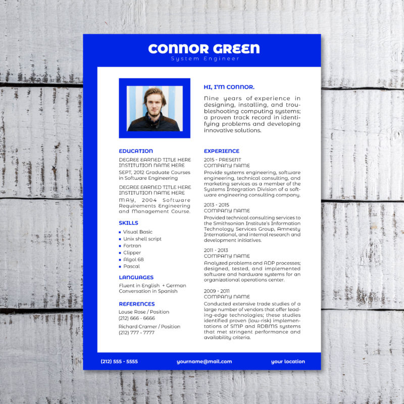 blue colored resume sample