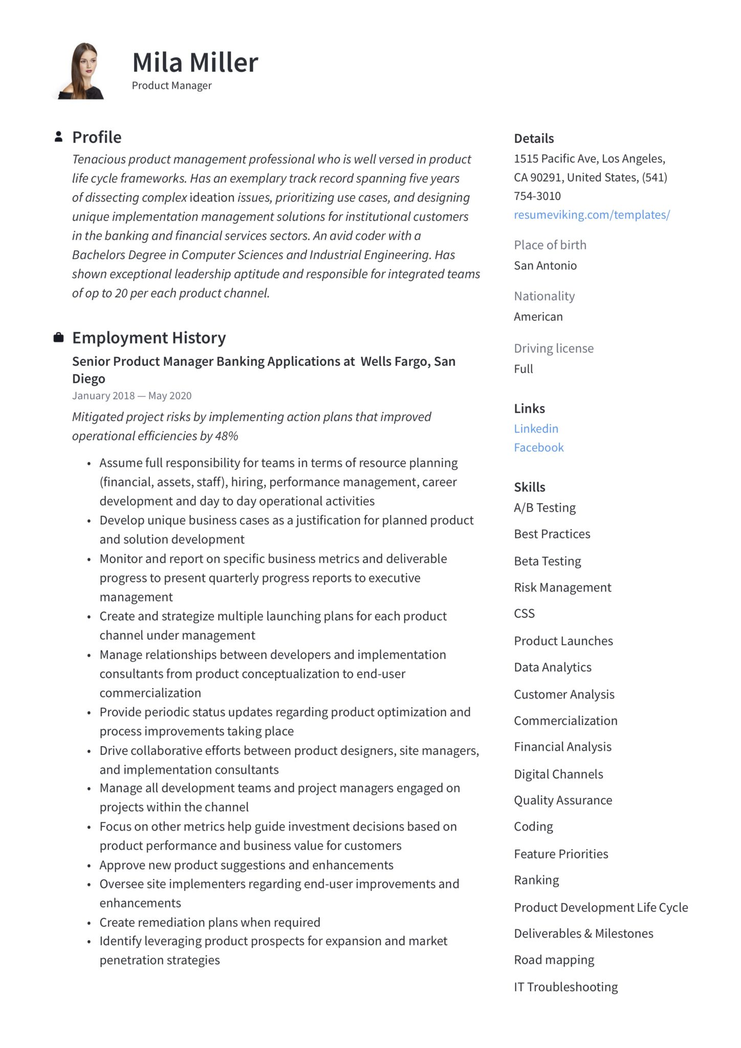 modern simple product manager resume ICT and IT