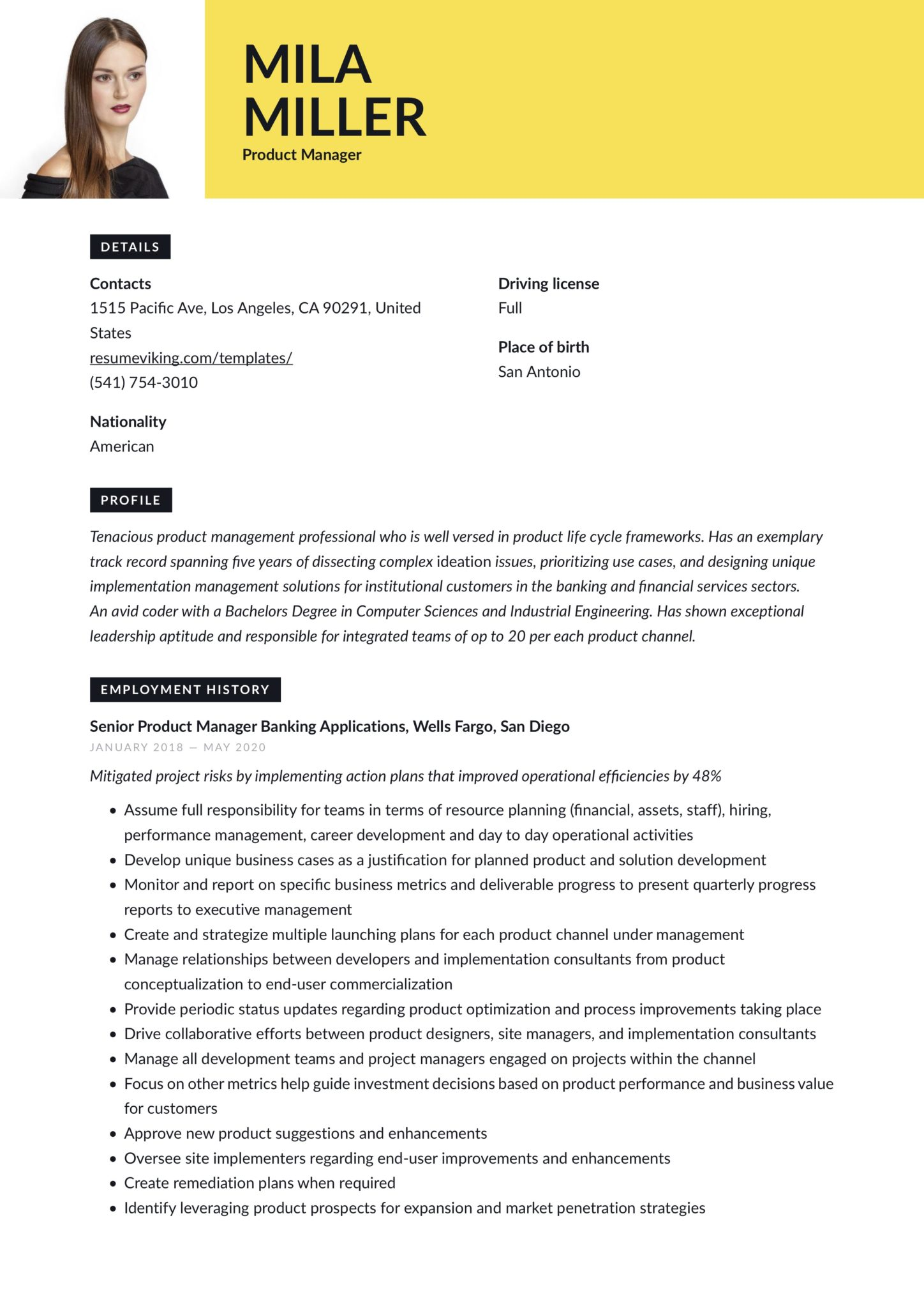 modern product manager resume software and application developement